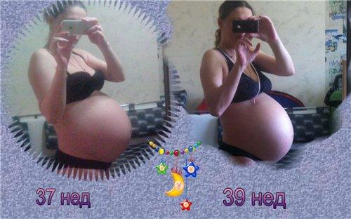Как опускается живот у беременной фото 2