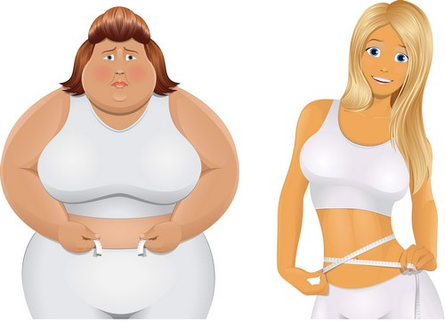 худая и толстая женщины