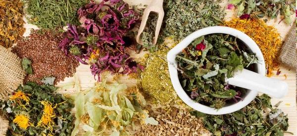 сбор трав для лечение желудка