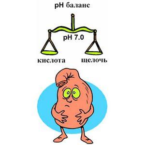 баланс кислотности желудка