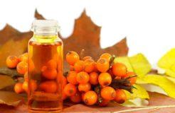 Облепиховое масло для желудка — показания и противопоказания