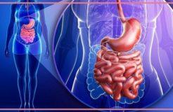 Лечение синдрома раздраженного желудка, его причины и симптомы