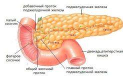 Как очистить поджелудочную железу и печень