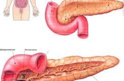 Симптомы проблем с поджелудочной железой, их причины