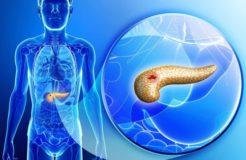 Паразиты в поджелудочной железе — виды и симптомы