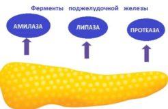 Список препаратов для восстановления ферментов поджелудочной железы