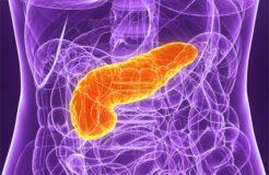 Как помочь поджелудочной железе, ее восстановление